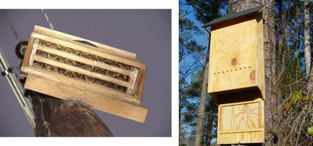Figure 7: Examples of bat houses.