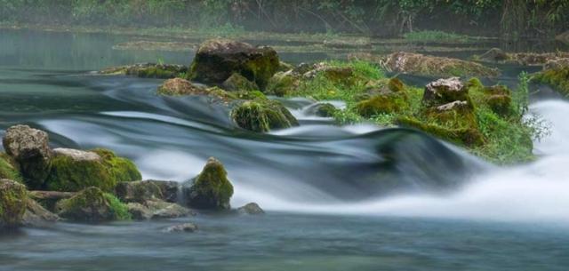 Figure 1: A creek in a Missouri State Park.